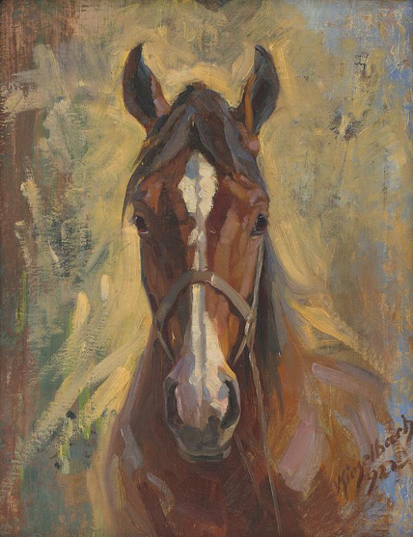Gejza Kieselbach - Hlava koňa