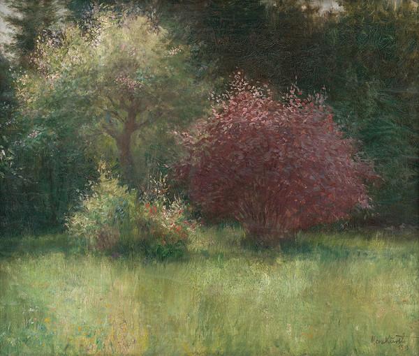 Maximilián Kurth – Meliorisova záhrada