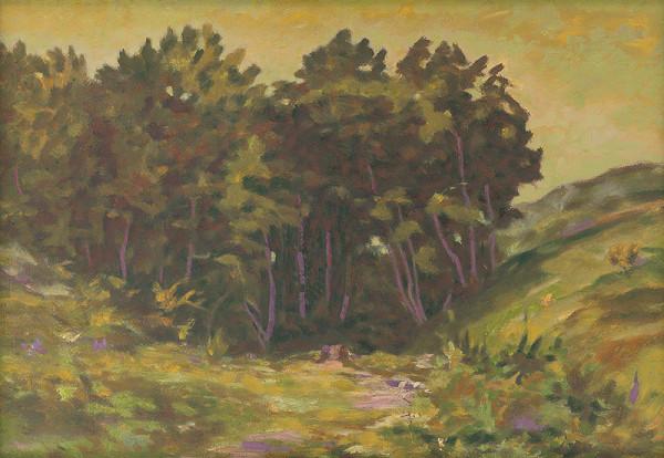 Július Muška – Tôňa lesíka