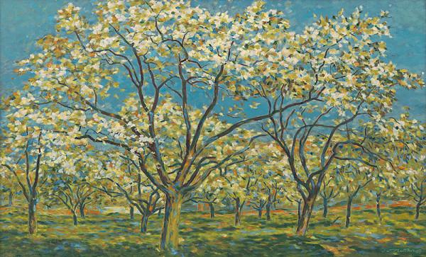 Július Muška - Kvitnúce jablone