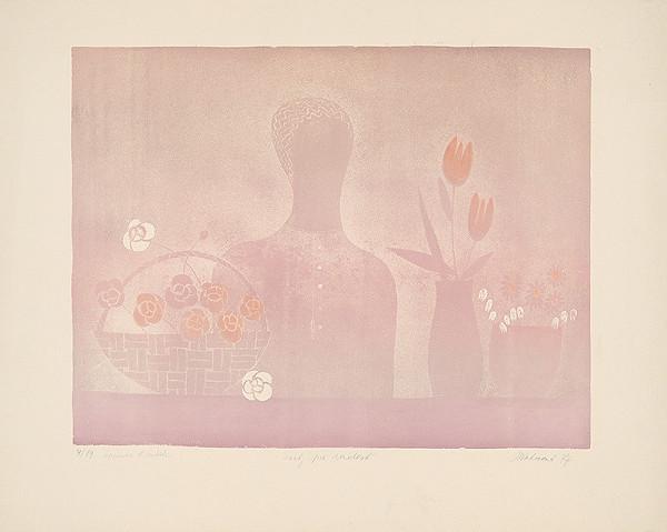 Blanka Votavová – Kvety pre radosť