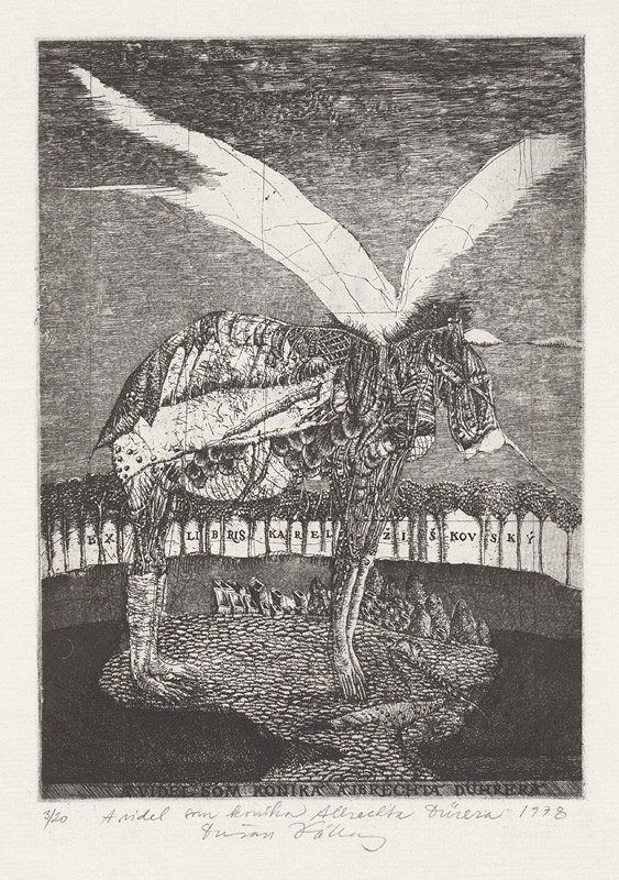 Dušan Kállay – A videl som koníka Albrechta Dürera