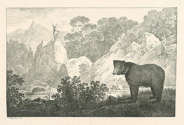 Max Josef Wagenbauer - Medveď v krajine