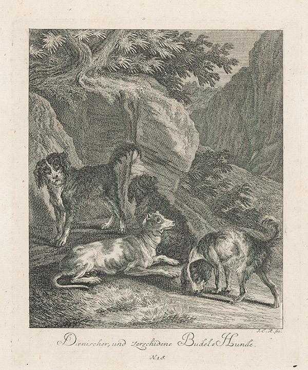 Johann Elias Ridinger - Psi