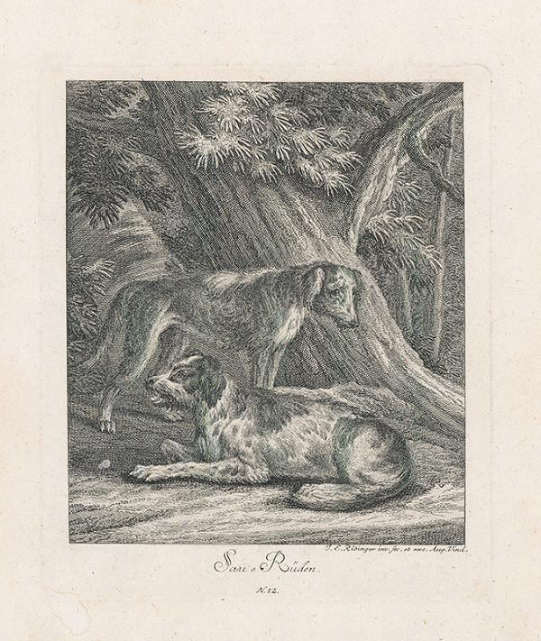 Johann Elias Ridinger - Loveckí psi