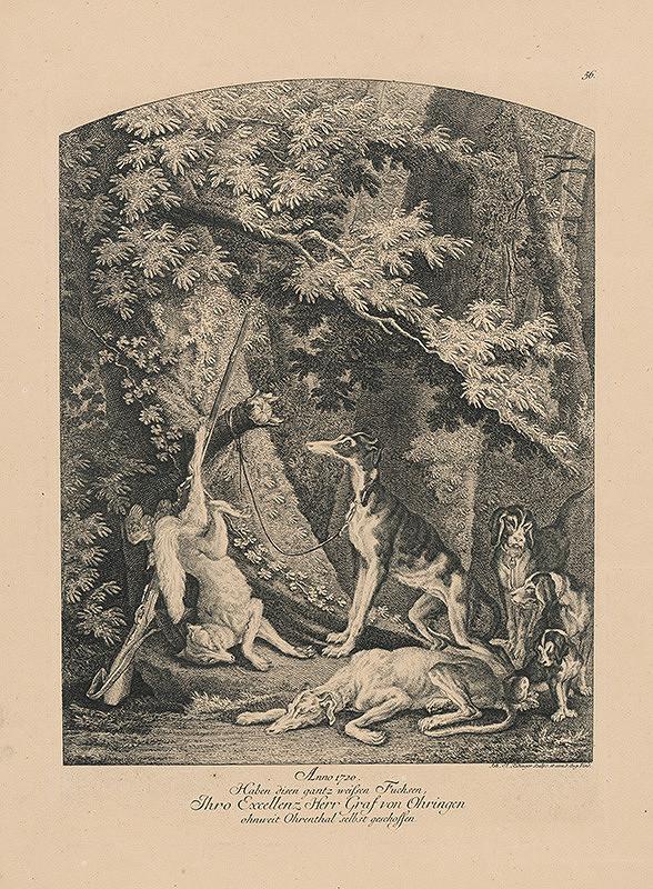 Johann Elias Ridinger – Zastrelená líška