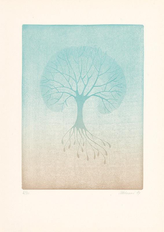 Blanka Votavová – Stromy