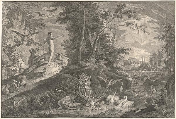 Johann Elias Ridinger - Adam