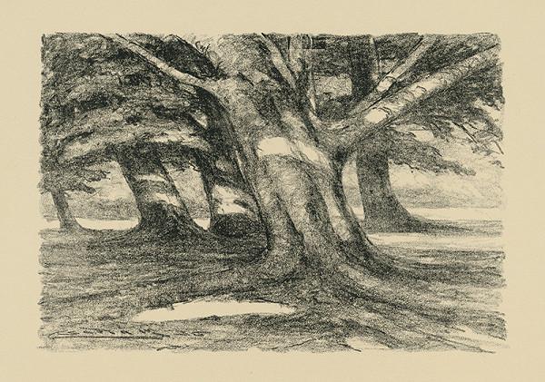 Ľudovít Čordák - Starý strom