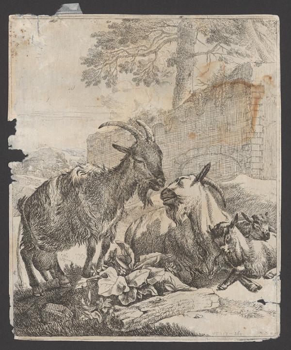 Johann Heinrich Roos – Kozy