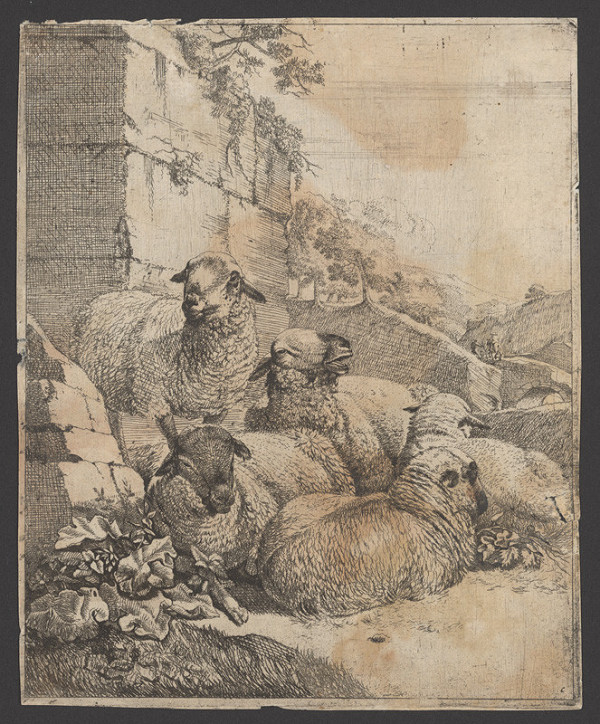 Johann Heinrich Roos – Stádo oviec