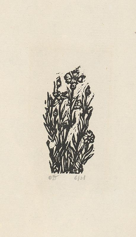 Orest Dubay - Jarné kvety