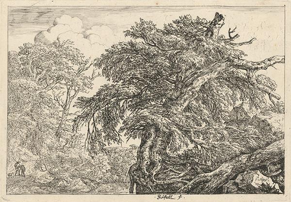 Jacob Isaackszon van Ruisdael - Starý les (Dvaja sedliaci so psom)