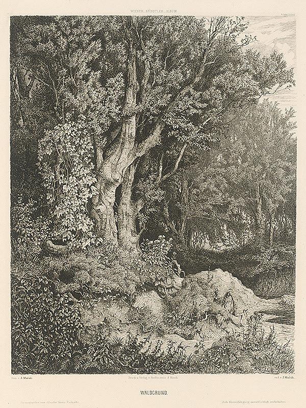 Julius Edvard Mařák – Lesná pôda