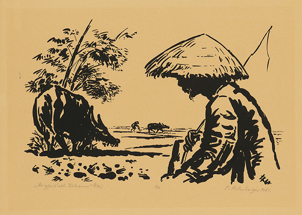 Ľubomír Kellenberger – Na ryžoviskách Vietnamu