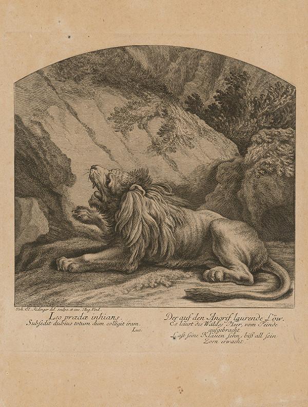 Johann Elias Ridinger - Lev