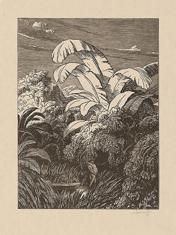 Max Švabinský – Život v pralese