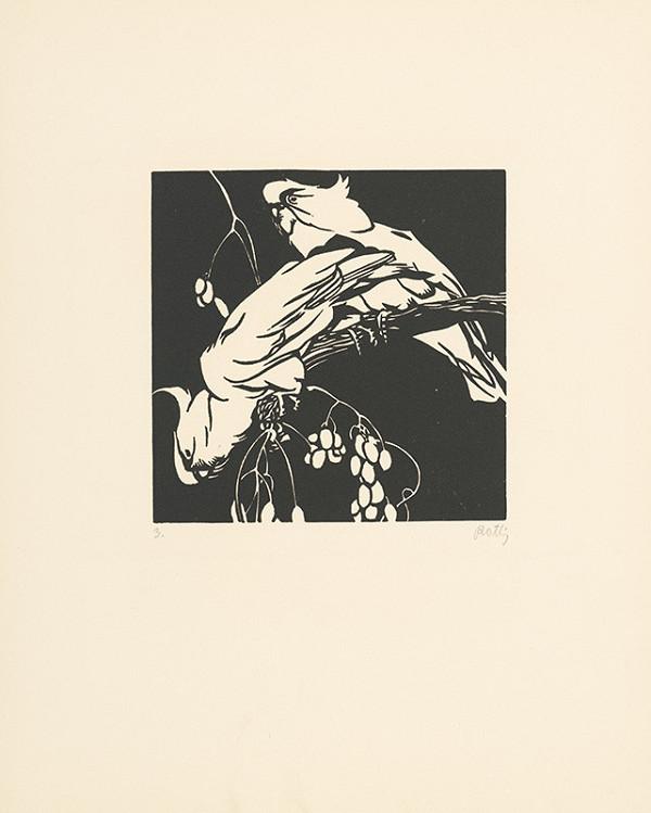 Norbertine von Bresslern-Roth – Kakadu