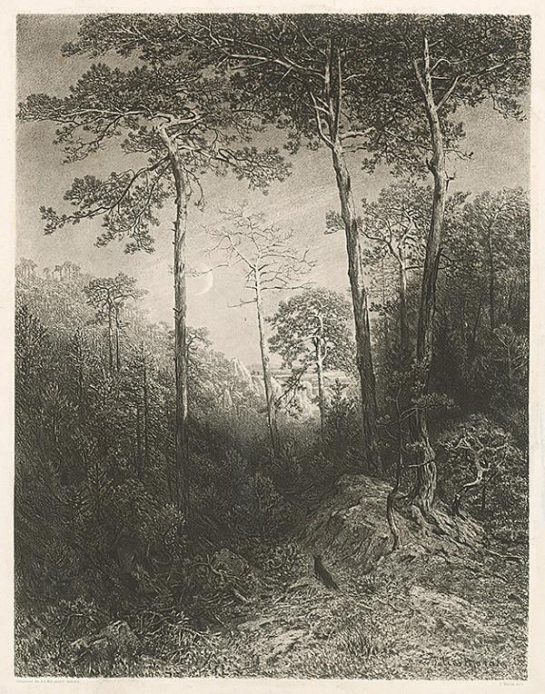 Julius Edvard Mařák – Lesné zátišie