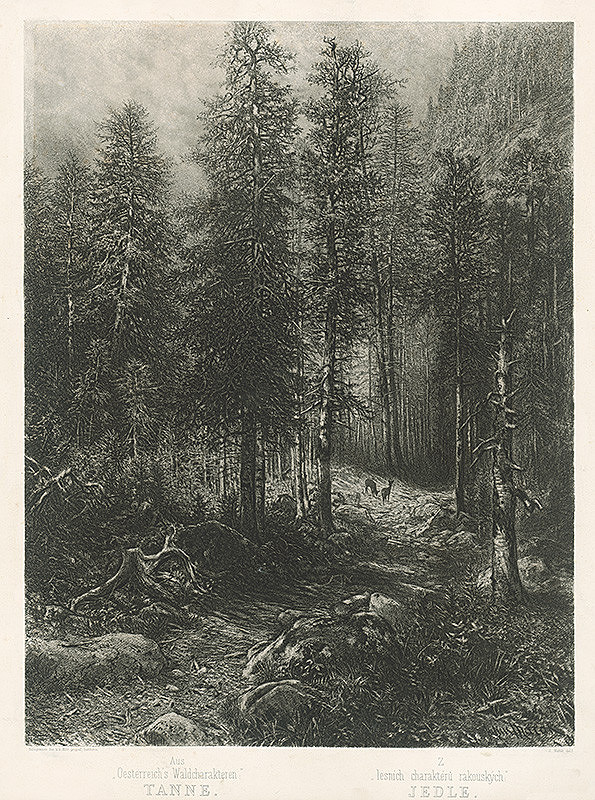 Julius Edvard Mařák – Lesný interiér