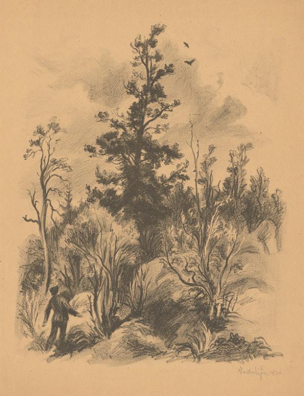 Jaroslav Vodrážka - V lese
