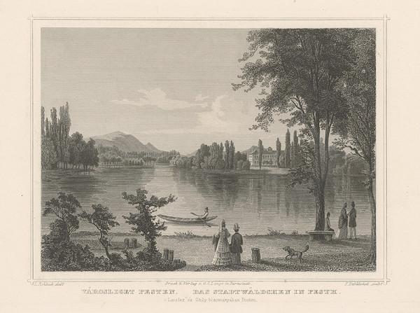 Franz Hablitschek, Ludwig Rohbock – Mestský lesík v Pešti