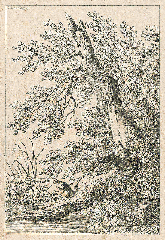 Johann Josef Schindler – Strom nad riekou