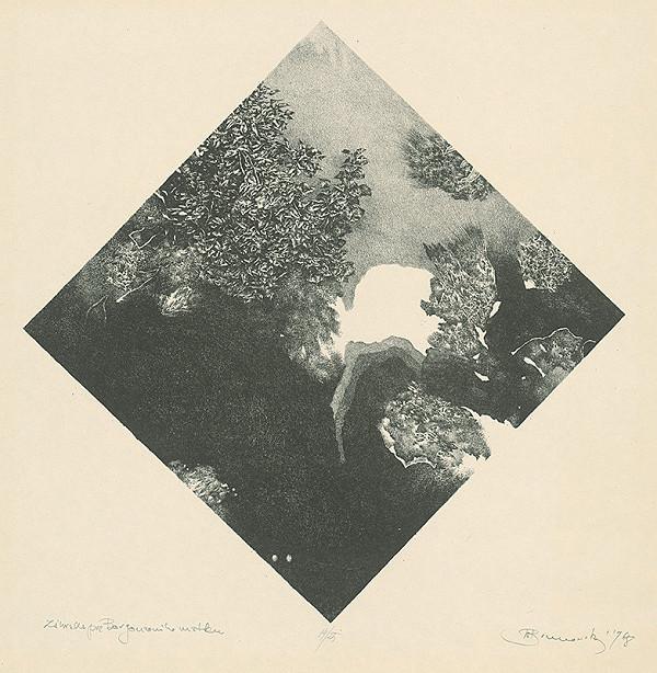 Albín Brunovský – Záhrada pre Borgonzoniho matku