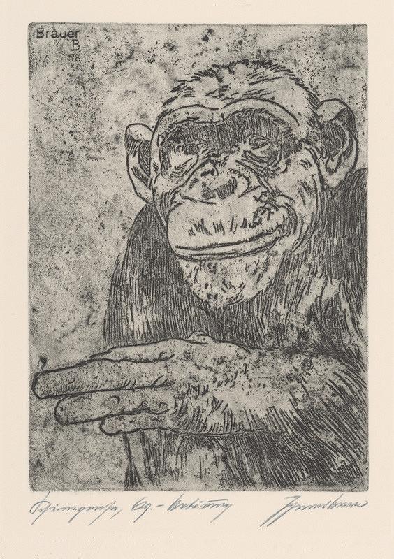 Johannes Brauer – Schimpanse