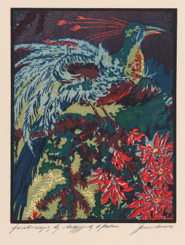 Johannes Brauer – Paradiesvogel