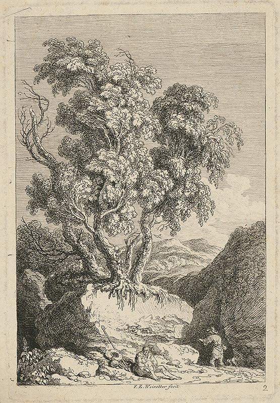 Franz Edmund Weirotter – Starý strom