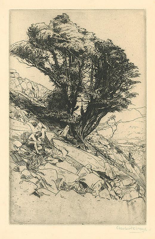 Charles Holroyd – Na skale
