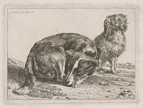 Johann Christian Reinhart - Dvaja psíci