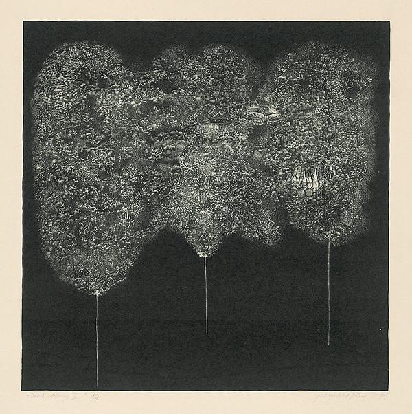 Viera Gergeľová – Biele stromy 2.