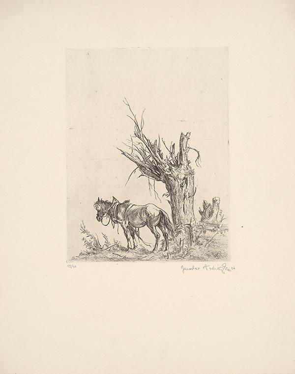 Jaroslav Vodrážka - Starý kôň
