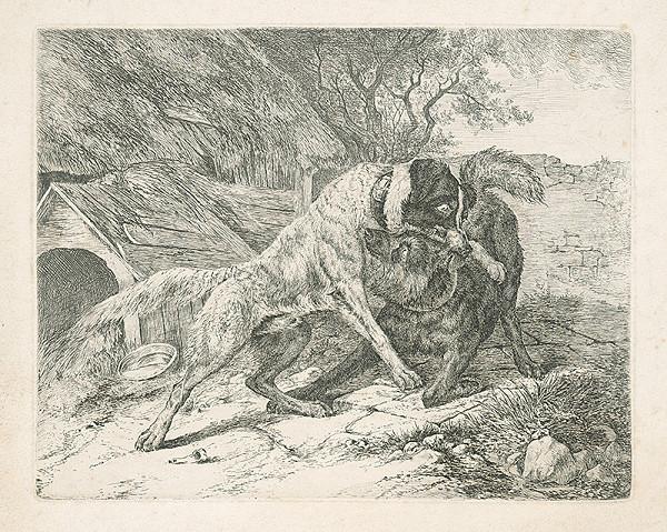 Západoeurópsky autor z 19. storočia - Psi
