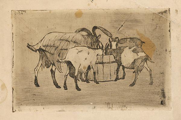 Frida Konstantin - Pijúce kravy