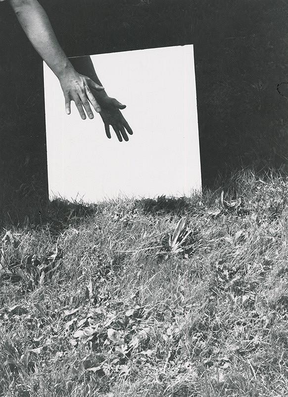 Alexandr Skalický - Zrkadlenie v tráve VI.