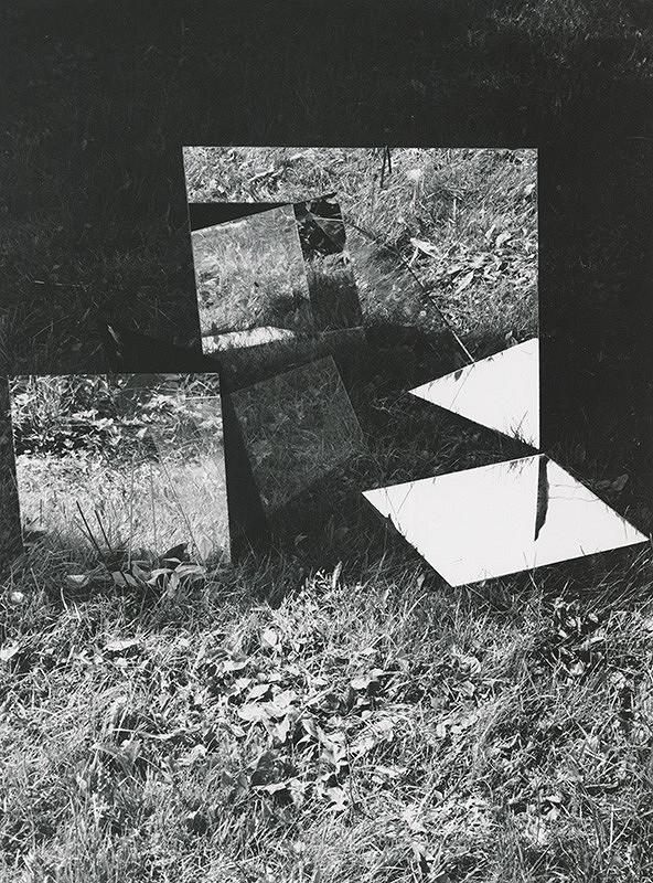 Alexandr Skalický - Zrkadlenie v tráve VIII.