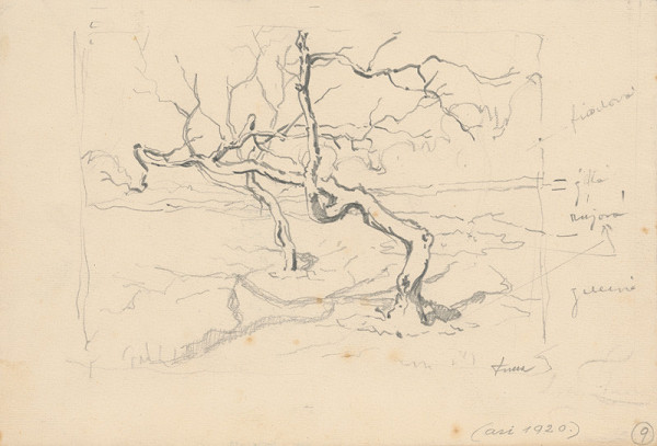 Ľudovít Fulla - Štúdia suchého stromu