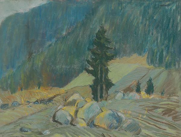 Zolo Palugyay – Horský potok medzi balvanmi
