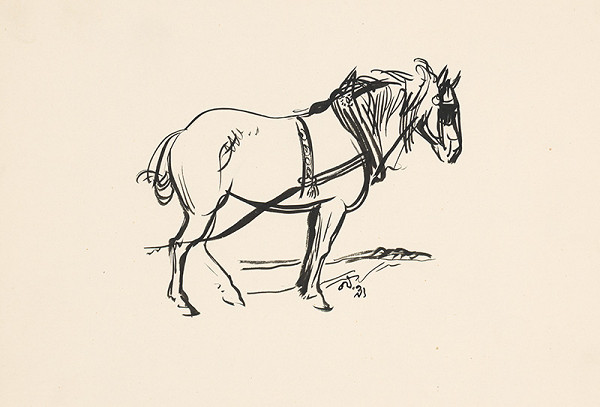 Jaroslav Vodrážka – Kôň