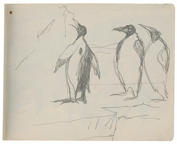 Margita Czóbelová – Náčrt tučniakov