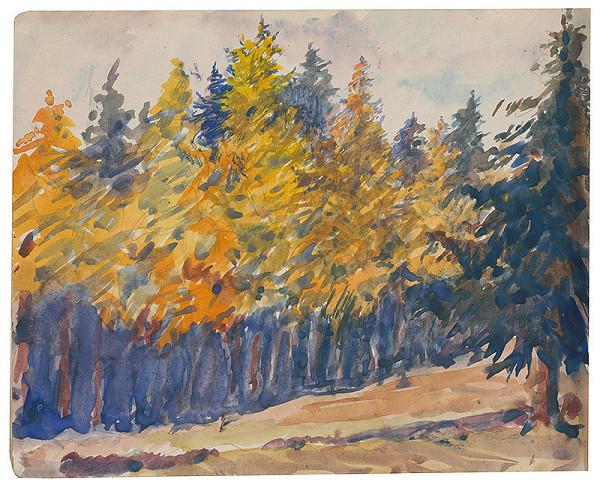 Margita Czóbelová – Náčrt lesa na jeseň