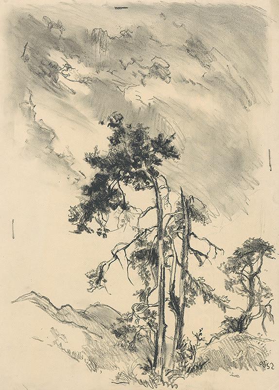 Jaroslav Vodrážka - Ihličnaté stromy