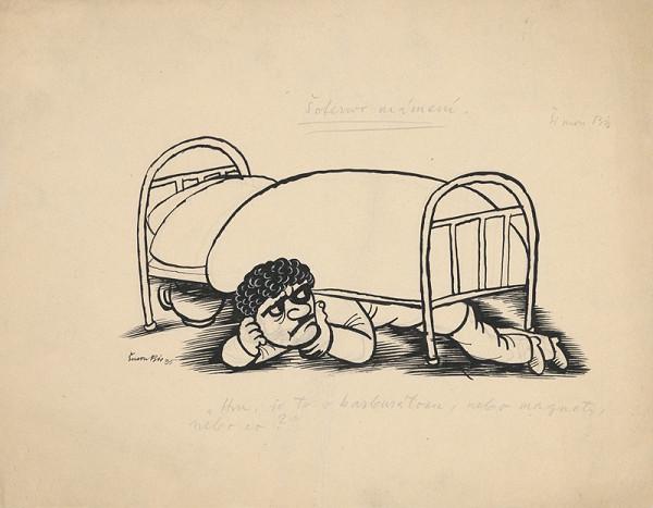 Štefan Bednár - Pod posteľou