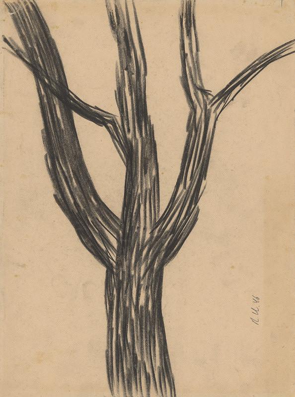 Rudolf Uher - Strom I.