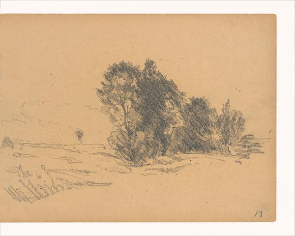 Maximilián Schurmann - Krajina so stromami