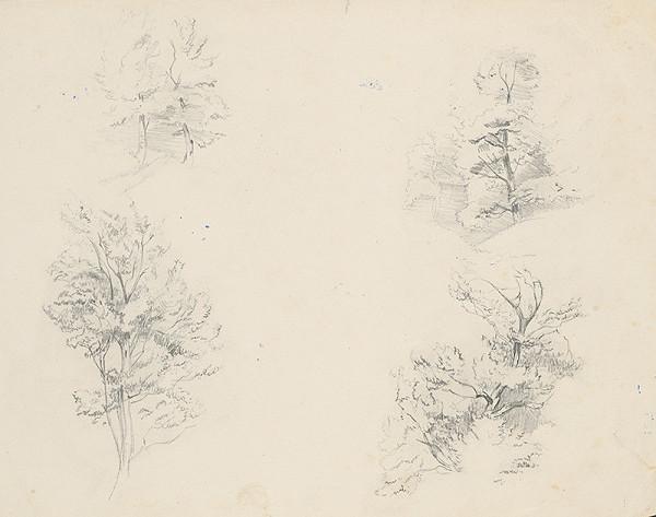Ladislav Mednyánszky - Štúdia stromov