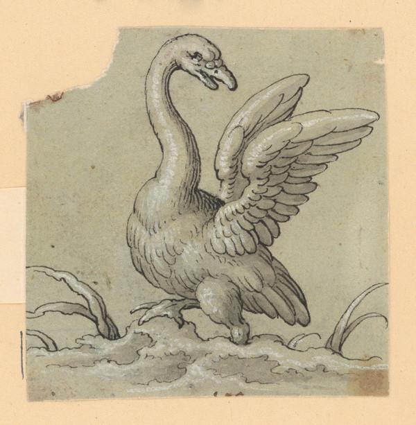 Taliansky majster zo 17. storočia - Labuť